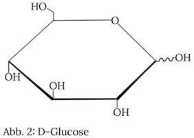 Kohlenhydrate Aufbau